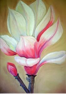 Magnolia Blossom-pic
