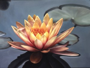 Large Bright Lotus